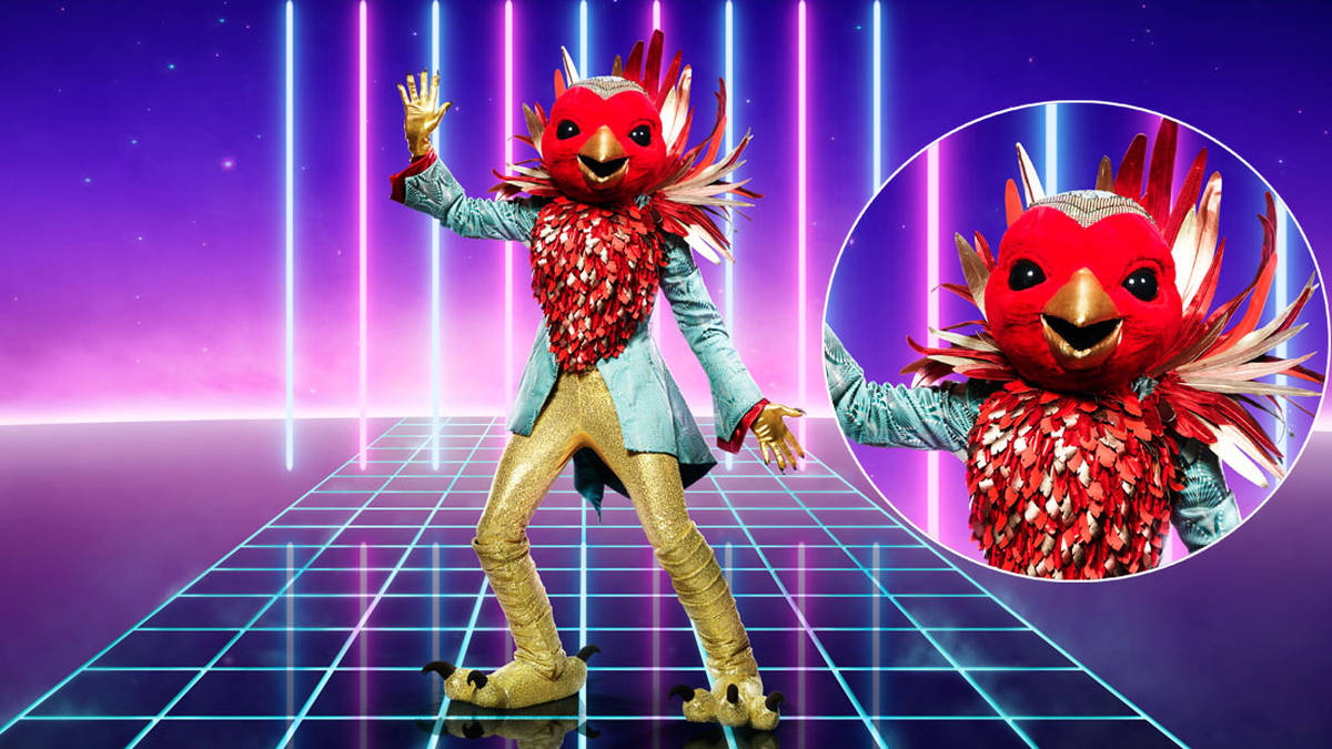Who is Robin on The Masked Singer? Celebrity identity clues and theories revealed